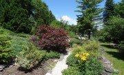 Carraig Mor Garden