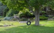 Carraig Mor Tire Swing